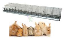 Gabbia e celle cm 48 per conigli conigliera ingrasso + mangiatoia + abbeveratoi