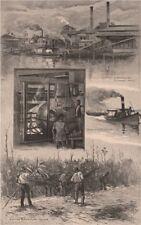 AUSTRALIAN SUGAR INDUSTRY. Broadwater Mill, Richmond river. Cane. NSW 1888