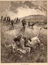 BUVEUR DE SANG CHASSEUR MASSAI HUNTER KILIMANDJARO TANZANIE IMAGE 1901 PRINT