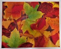 """Original oil painting signed by Nalan Laluk, nature scene: """"Autumn Leaves"""""""