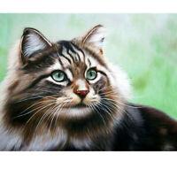 5D Full Drill Diamond Painting Cross Stitch Kits Embroidery Staring Cat Decors