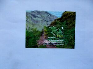 ASCENSION ISLAND: 2004 Endemic Fern Sheet U/M MS899