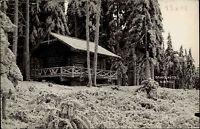 Wachau Niederösterreich s/w AK ~1950/60 Waldpartie mit Gruberhütte  ungelaufen