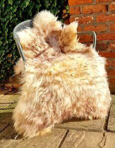XXXXL British Cream and Brown Wolftip Sheepskin Rug - 135cm by 80cm A++ (4483)