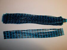 12 Silicone Skirt Tab * BLUE BLUE CRYSTAL BLACK BW *