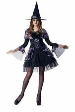 NEW Womens Purple Gothic Witch Dress Hat Adult Halloween Costume Size S 4-6