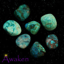 *ONE* CHRYSOCOLLA Natural Tumbled Stone Approx 15-20mm *TRUSTED SELLER*
