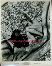 "Mike Henry Tarzan And The Valley Of Gold Original 8x10"" Photo #M2641"