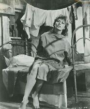 SOPHIA LOREN THE MILLIONAIRESS 1960 PHOTO ORIGINAL #106