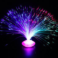 LED Fiber Optic Light Home Decoration Toy Multi-color Lamp Holiday Kids Gifts