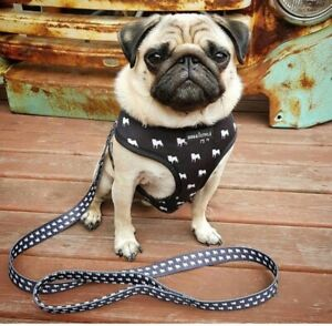 Doggistyle Black And White Dog Harness Pug And Lead Set Pug Print M Or L