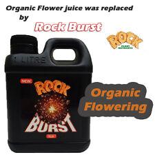 ROCK BURST ORGANIC FLOWER JUICE 1L PLANT NUTRIENT ADDITIVE FO HEAVIER FRUIT BUD