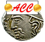 Numismall ACC coins