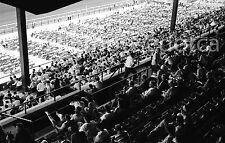 Woodbine Racetrack Grandstand/Crowd Toronto 60's Original B&W 35mm Film Negative