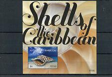 Antigua e Barbuda 2011 MNH gusci dei Caraibi IV S / S i Conchiglie di Mare TRUMPET