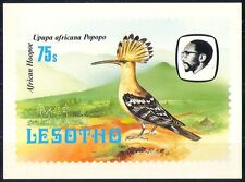 Lesoto 1982 Aves/abubilla/Montaña/naturaleza Postal a84
