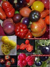 100 Tomatensamen 50♥verschiedene Sorten blaue blue schwarz gelb grün ohne Chemie