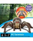 The Discovery Kids RC Tarantula Spider
