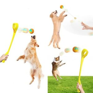 Pet Dog Accessories Dog Throwing Cue Stick Outdoor Interactive Dog Walking Toy