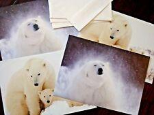 Defenders Of Wildlife Polar Bear Happy Holidays & Blank Note Cards W/ Envelopes