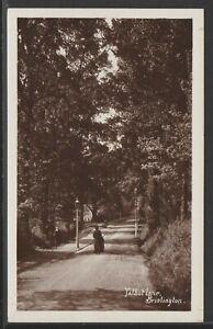 Talbot Lane Brislington Bristol Vintage RP Postcard