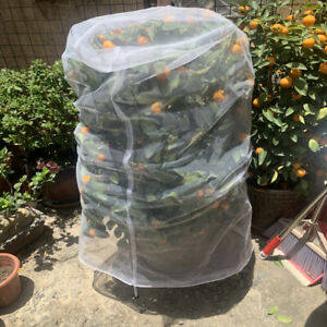 Fruit Fly Net Insect mesh Vegetable Garden Plant Crop Protection Cover Bags