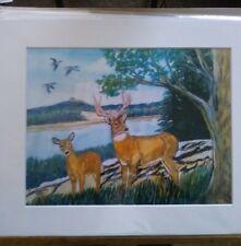 Deer By Lake Side Country