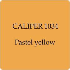 Pintura de alta calidad alemana Pinza Pastel Yellow 1034 Cepillo de 250Ml en