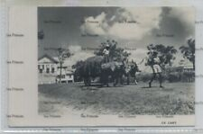More details for british guiana guyana postcard ox cart by louis chung bookers photo dept
