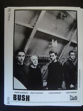 BUSH Press Promo Photo 8x10 Hard Rock GAVIN ROSSDALE lot of 5