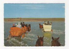 Cuxhaven Duhnen Wattwagen im Priel 1966 Postcard Germany 638a