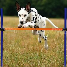 Pet Dog Jumps Training Agility Equipment Show Obedience Tunnel Outdoor US Local