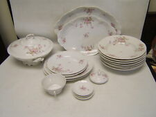 New Habsburg Porcelain Lot of 21 Pieces Pink Flowers on White Austria