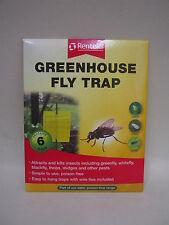 New Rentokil Greenhouse Sticky Fly Trap Contains 6 Traps Kills Blackfly Greenfly