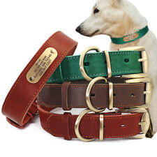 Genuine Leather Dog Collar Custom Engraved ID Nameplate Brown Green Red M L XL