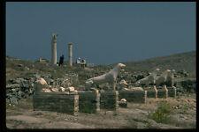 551010 famoso LION Passeggiata Terrazza dei Leoni Delos Grecia A4 FOTO STAMPA