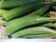Emerald Green Velvet Heirloom Okra Non-GMO 7 g. approx.120 Seeds FREE SHIPPING!