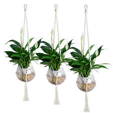3X PLANT POT HANGER SIMPLISM COTTON FOR INDOOR CEILING HOLDER HANGING S+M+L B65