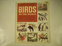 A Golden Stamp Book Birds of the World 48 Color Pictures of Birds 1957 GC 66-1E