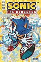 Sonic The Hedgehog #25 Cvr A (2020 Idw Publishing) First Print Hesse Cover