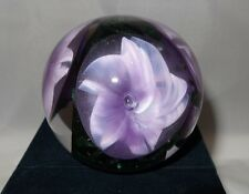 Glass Eye Studio Handcrafted Environmental Morning Glory Romance Paperweight 614