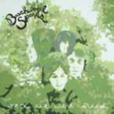 BEACHWOOD SPARKS-ONCE WE WERE TREES-IMPORT CD WITH JAPAN OBI E12