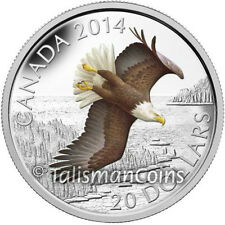 Canada 2014 American Bald Eagle Soaring Day in Life $20 Pure Silver Proof Color