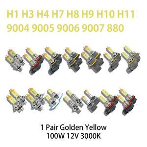 Halogen Headlight Xenon Lightbulb 12V 100W 3000K Pair Yellow High Low Beam & Fog