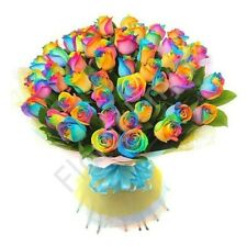 Stunning Natural 50 Rainbow Roses ... Free Shipping !