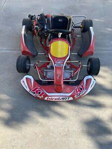birel racing go kart Briggs and Stratton lo206 class motor