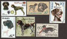 German Wirehaired Pointer * Int'l Dog Stamp Art Collection *Great Gift Idea*
