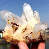 328g Natural Clear White Quartz Crystal Cluster Rough Healing Specimen