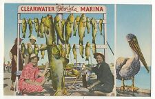 Clearwater Marina, Florida, Pelican and Fishing, Fish - Vintage FL Postcard Re**