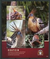 Guyana 2018 MNH Hoatzin National Bird of Guyana 4v M/S Coat of Arms Birds Stamps